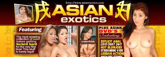 Asian Exotics review
