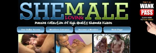 Shemale loving site blocked
